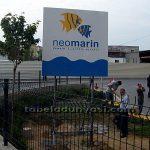 neomarin_dis_yonlendirme1