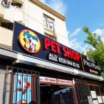 Aren Pet Shop Isıklı Kutu Harf Tabela Montaj