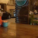 Cafe6 Isıklı Lambri Ahsap Totem